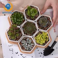 Home Decor(7 pots+1 tray) Set of Decorative Geometry Hexagon White Ceramic Succulent Plant Pot Porcelain Flower Pot