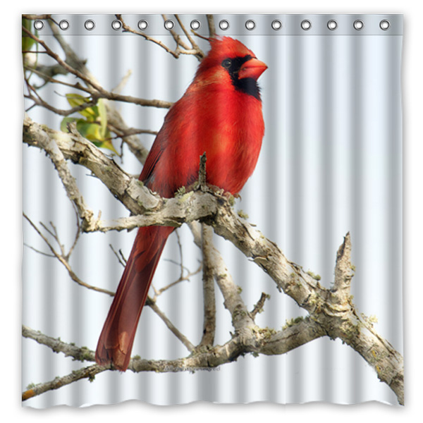 Curtains Ideas bird shower curtain hooks : Popular Bird Shower Curtain Hooks-Buy Cheap Bird Shower Curtain ...