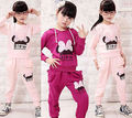 Baby Girls Kids Long Sleeve Casual Hoodies Clothes Shirt Pants Sportswear Outfit