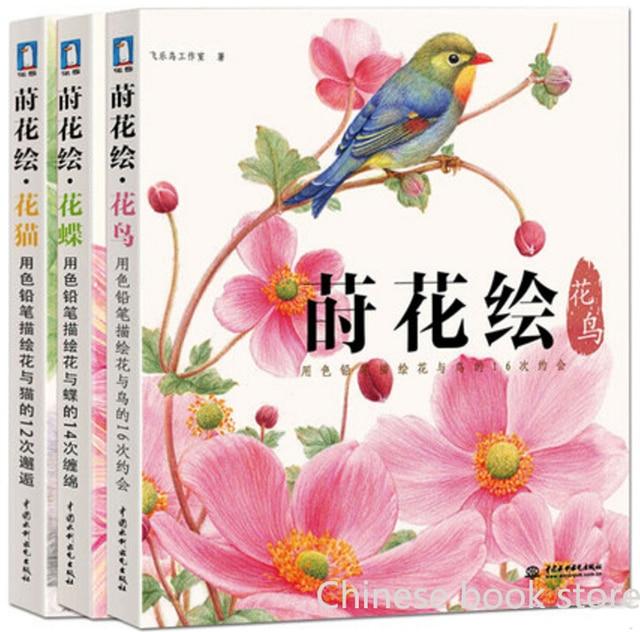 Feile Bird Chino Para Colorear Lápiz De Color Dibujo Libros Mariposa