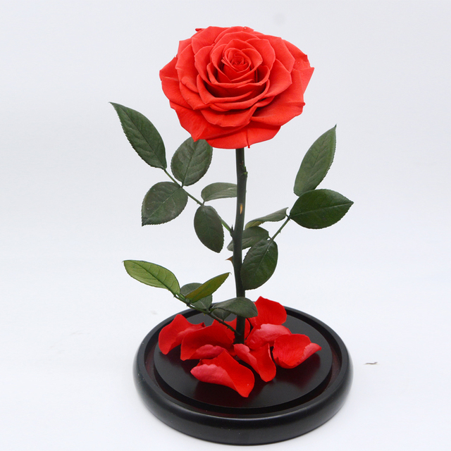 Single Real Red Preserve Roses With Long Stem Leaf In Gl Dome S Preserved