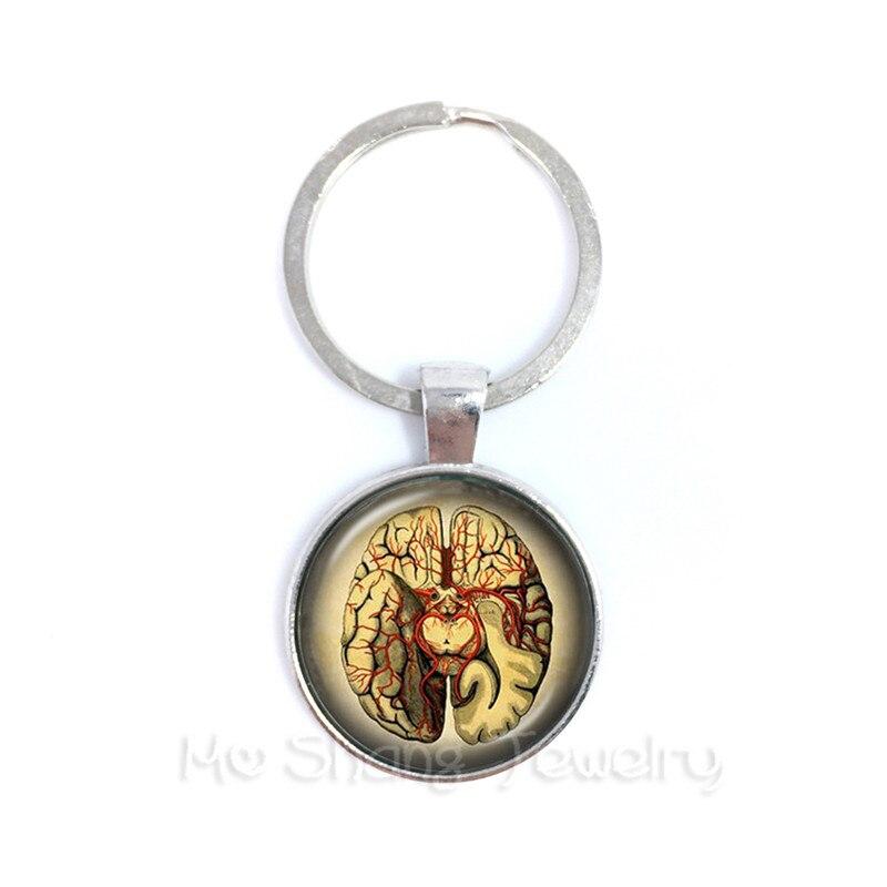 Human Anatomy Organ Keychain Glass Cabochon Science Medical Punk Brain Eye Jewelry Key Holder Creative Gift