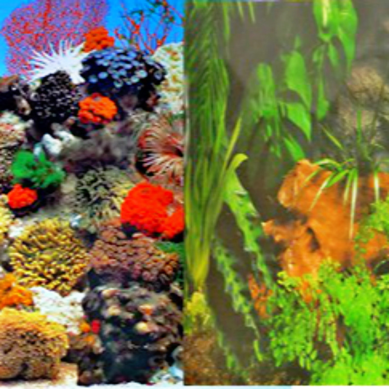 Height 30 100cm aquarium fish tank decoration waterproof for Aquarium background decoration