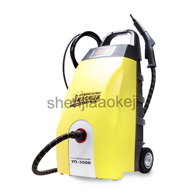 Steam sterilization clean machine steam jet handheld cleaner Car beauty salon cleaning company catering industry Equipment