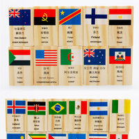 100 Pz Bandiera Nazionale Domino Blocchi di Costruzione In Legno Colorato Apprendimento Giocattoli Educativi di Legno Domino Mattoni Regalo Per I Bambini