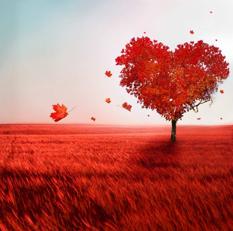Clouds Fall Heart Tree Red Grass autumn backdrops Vinyl cloth High quality Computer print wall Background