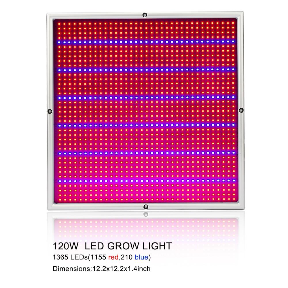 Full Spectrum LED Plant Grow Lights 10
