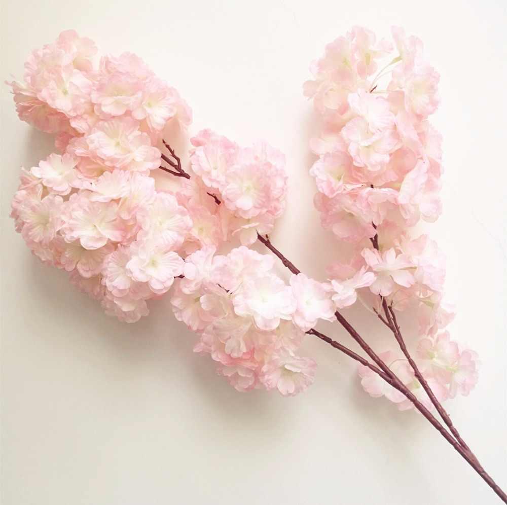Проект цветы нашего класса