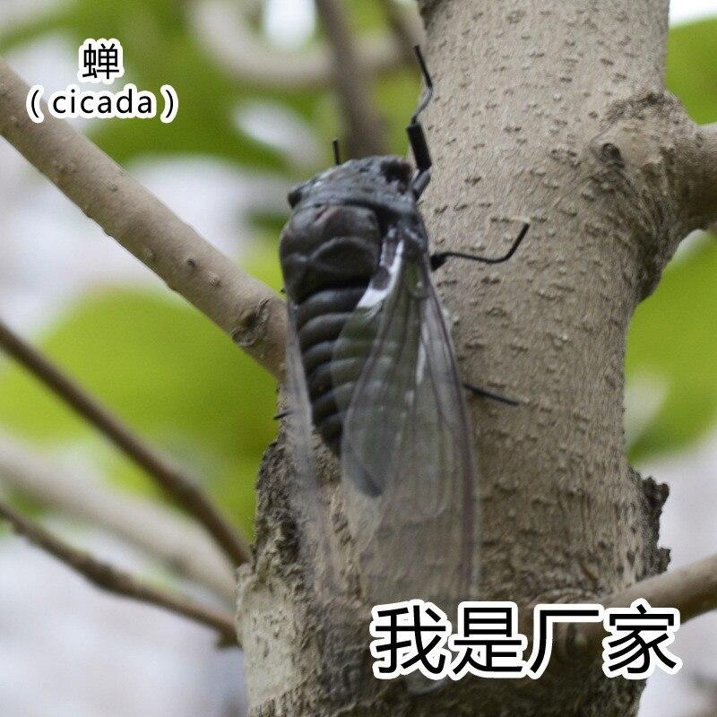 da arte popular inseto artificial modelo artesanato