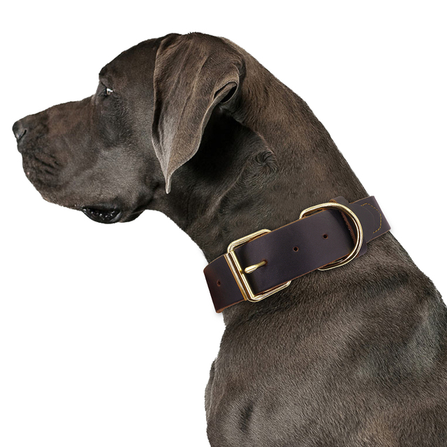Dog Puppy Collar Genuine Leather Pet Collars For Small Medium Large Dogs Real Leather German Shepherd Big Dog Collar XS-XXL 4