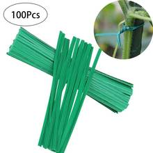 100Pcs Plastic Green Grape Rattan Supports Gardening Vine Climbing Plants Twist Ties Cable Tie Lines Home Office alambre bonsai