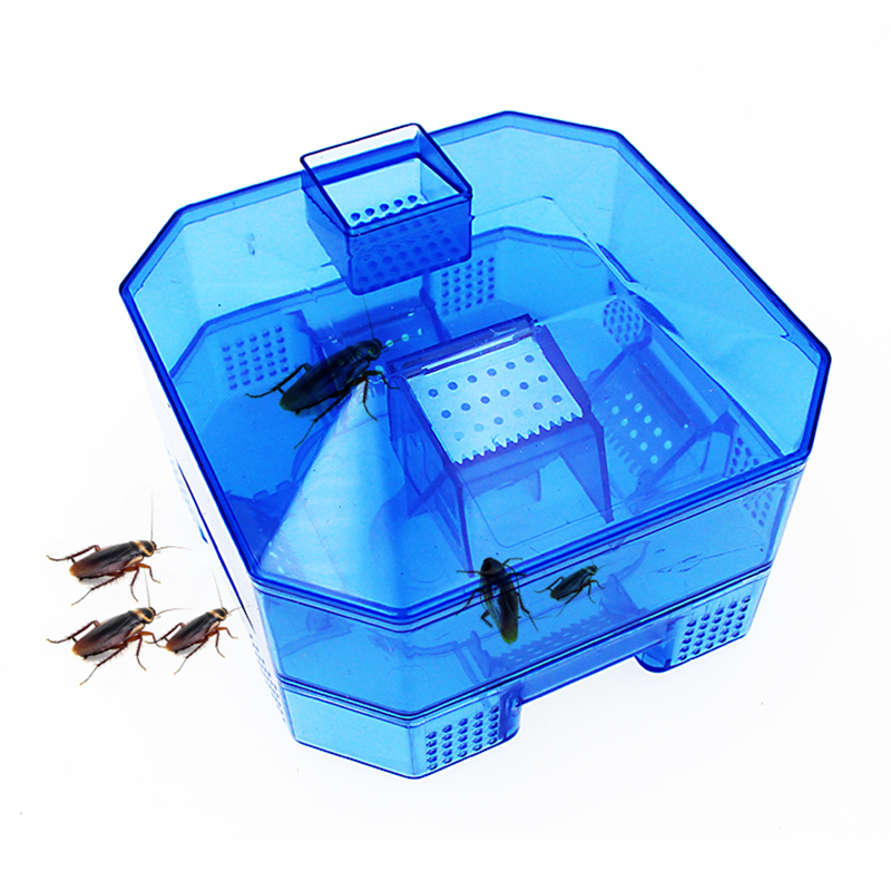 Dxbqyyxgs Von Kakerlaken Kakerlake Falle Upgrade Sichere Effiziente