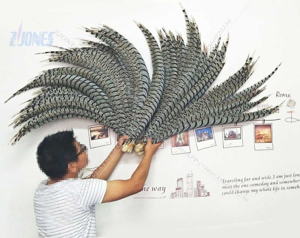 ZJONES Wholesale 50pcs/lot 32 36inch(80 90cm) Natural Good Quality Zebra Pheasant Feather for Carnival Decoration Headdress-in Feather from Home & Garden    1