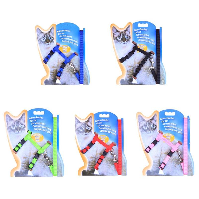 Misterolina Nylon Personalized Pet Collar Harness Rope And Lead Leash Adjustable Pets Safety Belt Cute Pets Acessorios Collars