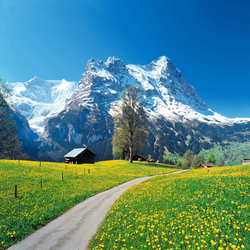 2017 hottest nature wallpaper pastoral style yellow flowers snow 2017 hottest nature wallpaper pastoral style yellow flowers snow mountain landscape 3d mural living room restaurant cozy fresco in wallpapers from home mightylinksfo
