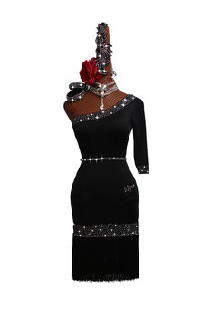 Custom Made Competition Latin Dance Dress Women Rumba Skirt Ballroom Stage Costumes Fringe Dance Salsa Dresses Black Rhinestones