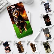 Qdowpz Rottweiler Dog Puppies For Galaxy Alpha Core Prime Note 4 5 8 S3 S4 S5 S6 S7 S8 S9 mini edge Plus Soft Cases(China)