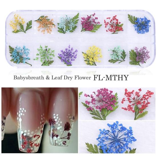 Сухоцветы лист ногтей украшения натуральный наклейка в виде цветка 3D сухой для маникюра ногтей наклейки ювелирные изделия УФ Гель-лак Маникюр TRFL-1 - Цвет: FL-MTHY