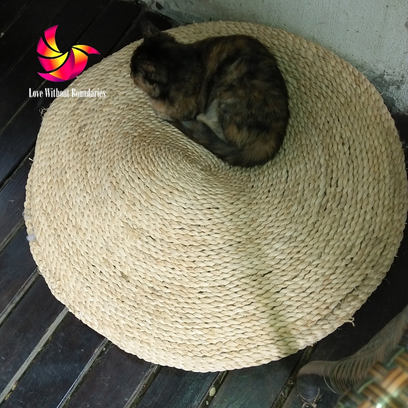 Pet Fetus Mat, Natural Straw Futon, Hand Woven, Round, Cat Dog Meditation,  Balcony Window Thickened Cushion, Pet Fit Waterloo In Cat Beds U0026 Mats From  Home ... Gallery