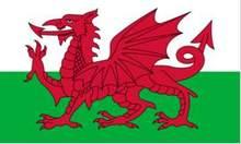 Bandeira Nacional de Poliéster Bandeira do país de gales Flying150 * 90cm 3ft x 5ft bandeira em Todo o mundo Em Todo O Mundo ao ar livre