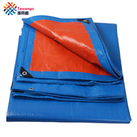Tewango Brand Outdoor Waterproof Tarp PE Sun Shade Sails Camping Shelter Woodpile Roof Cover Awning Tent 160g\/sqm
