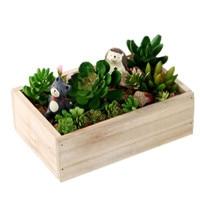 Retro Square Wooden Box Home Furnishing Fleshy Small Flowerpot Garden And Decoration
