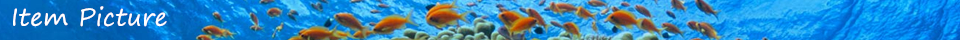 Material do filtro do aquário do algodão