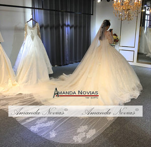 Image 5 - 2019 robe de soiree düğün elbisesi amanda novias Shinning Modeli Yeni