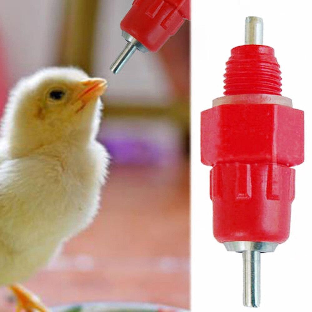 3 CHICKEN WATERER SCREW IN POULTRY NIPPLES DRINKER BIRD DRINK WATER FOWL CHOOK
