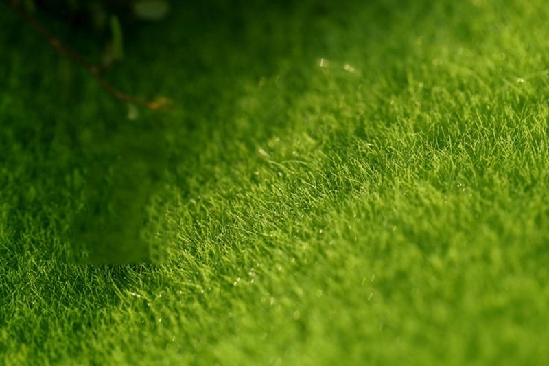 Flone Artificial PVC Grass Lawn False Moss Fake Turf Micro Landscape Decoration Accessories Home Living Room Decoration (9)