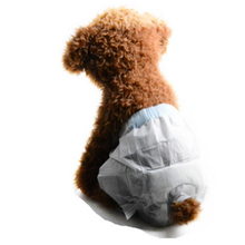 10PCS/Bag Pet Diapers Female Dog Disposable Leakproof Nappies Puppy cat Super Absorption Physiological Pants Menstrual safety