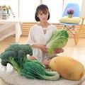 1 PC Exquisite Criativo Stuffed & Plush Plantas Simulação 3D De Legumes Travesseiro Sefety Repolho Batata Brócolis Pelúcia Macia Brinquedos