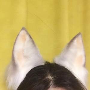 Image 4 - Nuevo cosplay de Lolita traje accesorios leche Lobo zorro orejas de gato de lobos sombrero Prop Aro para mujer, chica,