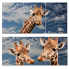 Mordern Animal Oil Painting Deer Giraffe Wall Art Poster And Print Home Decor Canvas Pictures For