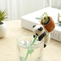 Animal Owner Recommended Water Thirsty Thirst Suck In Small Potted Green Plant Planting Small Gift Ideas