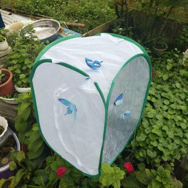 Mesh Butterfly Cage Insect Butterfly Habitat Terrarium Pop Up Pattern Anti  Insect Fly Net Home