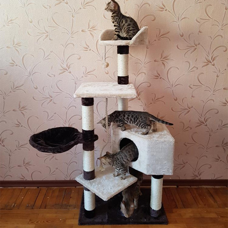 HOT!!! Cat Climbing Furniture Pet House Scratching Post Kitten Playing With Ball Cat Training Frame Product With Pet Bed #0232