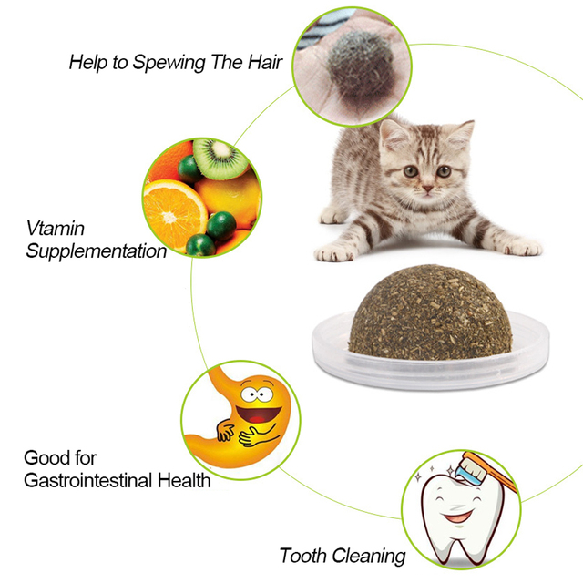 Natural Catnip Toys For Cats Crazy Healthy Cat Toys For Kitten Edible Treating Cleaning Teeth Cat Supplies Pet Toy Pet Products 2