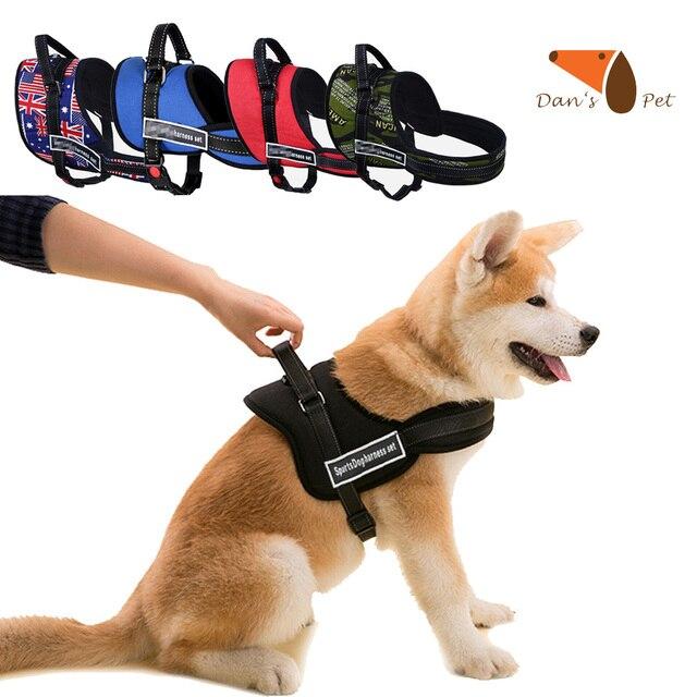 arneses perros personalizados