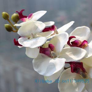 Image 1 - 1 tallo flor Artificial de seda, polilla, orquídea, mariposa, orquídea para casa nueva, decoración de fiestas de bodas en casa, 6 tipos, 12 colores, F152