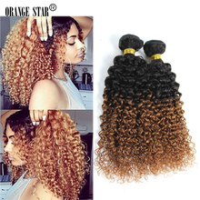 "4PCS 7A Brazilian Ombre Hair Extensions Curly Two Tone Human Hair Weft 10-30"" Color 1b 30 Tissage Curly Ombre Hair Weave BJ403"