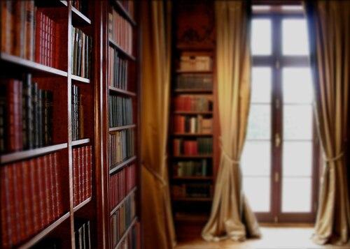 HUAYI Bookcase Photography Backdrops Art Fabric Bookshelf