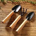 3 шт. мини садовая лопата грабли Лопата Erramientas бонсай набор инструментов деревянная ручка для цветов Горшечное растение