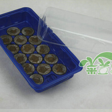 2set,15 hole box nursery pots seedling tray with 30mm jiffy nursery bo