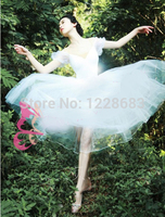 Free Shipping New 2015 Kids Women Romantic Fairy Balet Ballerina Dress Adult Long Tutu Ballet Lyrical Dress