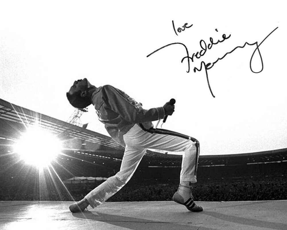 Detail Feedback Questions about Freddie Mercury Queen