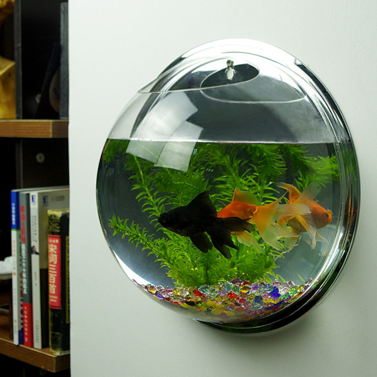 2016 Newest Hot Sale Wall Hanging Mounted Bubble Aquarium Bowl Acrylic Fish  Tank Aquarium Home Decoration Pot High Quality-in Aquariums & Tanks from  Home ...