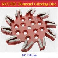 10'' Strange shape Flying Diamond Grinding Disc for EDCO Blastrac SPE floor grinder | 250mm disk for SPE DFG 500 | 20 segments