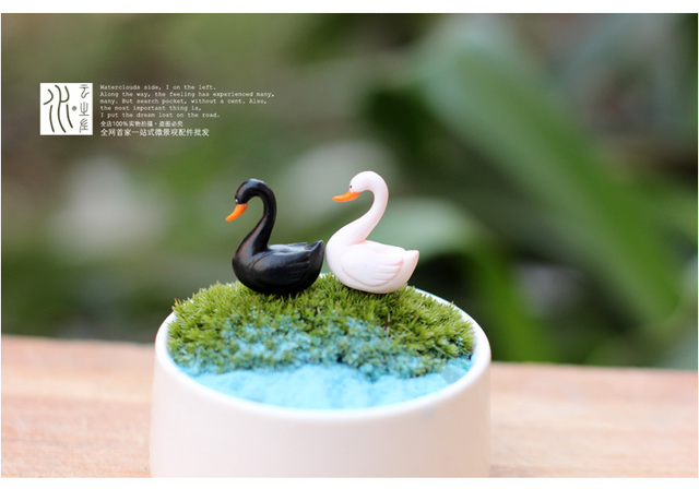 US $9 13 5% OFF|Wholesale mini birds Swan fairy garden miniatures figurines  terrarium decor artificial resin crafts bonsai home decor for zakka-in