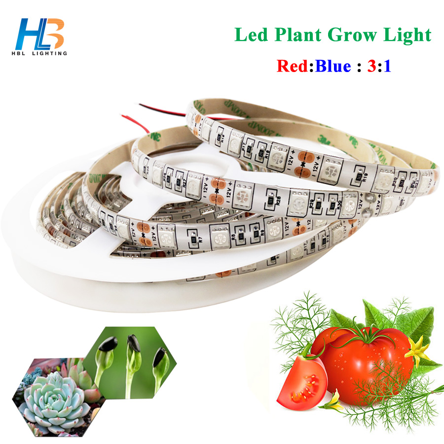Led Plant Grow light 5050 Grow Light 5 M Non Waterproof 12 V 3 Red 1 Blue for Greenhouse Hydroponic Plant LED Strip led tape zdm 5m 72w led plant light strip 300pcs 5050 5 red 1 blue group dc 12v